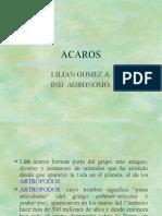 ACAROS[1]