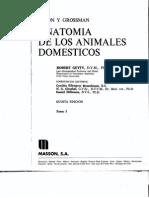 anatomía de los animales domésticos  Sisson Grossman Getty
