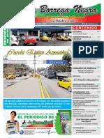 La Borrega Negra Publicación Junio a Julio 2015