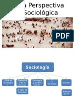 SOCIOLOGIA GELLES.pptx