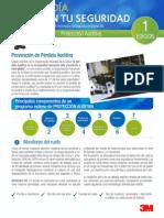 boletin PSD 1 andean.pdf