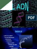 El ADN.ppt