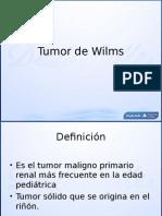 7 Tumor de Wilms Dra Chavez INP