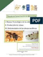 Memoria de Capacitacion Apicola 2010.pdf