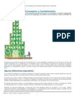 Qué Es La RSE_ Conceptos y Fundamentos