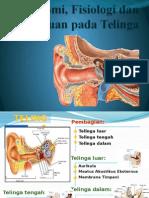 Anatomi, Fisiologi Dan Gangguan Pada Telinga