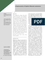 Acute Nephrotoxicity of Cisplatin Molecular Mechanisms