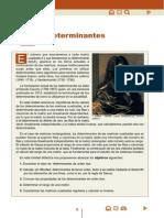 DETERMINANTES TEORIA.pdf