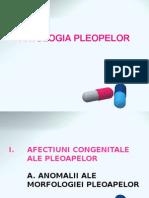 x Curs Patologia Pleopelor