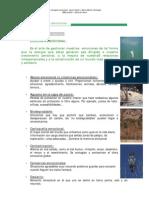 VOLUNTAT-Atlas Ecologia Emocional