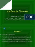 Auditor%EDa Forense