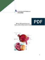 Renal Pathophys SGD 1