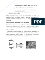 Caracterizacion Microscopica de La Fractura Dúctil