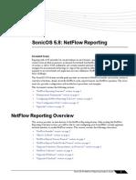 NetFlow Feature