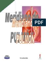 meridiano Diapo Semin 1 PULMON