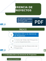 Introducción Gerencia de Proyectos