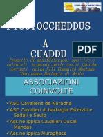 PROGETTO PICCIOCCHEDDUS A CUADDU