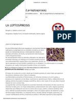 Saludpublicavet - La Leptospirosis