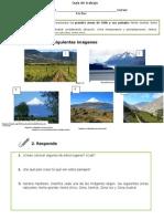 Fichas didácticas_imple.docx