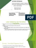 Presentation ferrofloid magnetik.pptx