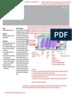 Exemplo-Ecologico Lavaclassic en Fl3.PDF