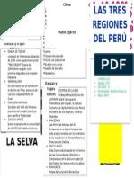 TRIPTICO DE LAS TRES REGIONES DEL PERÚ CARATURA.docx