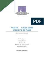 Análisis crítico  diagramas de fases