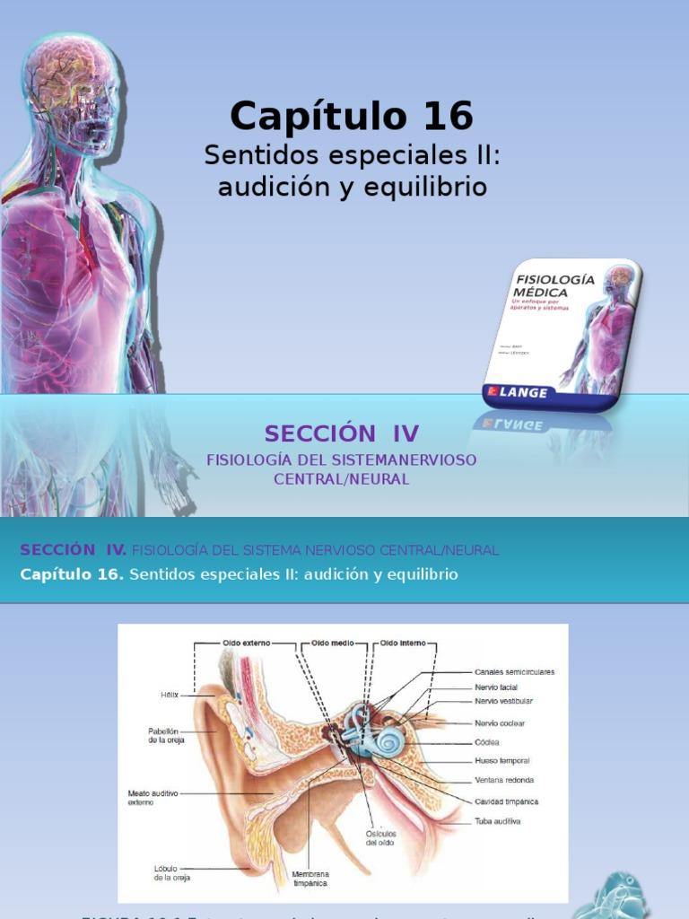 Vistoso Fundamentos De La Anatomía Y Fisiología Humana Octava ...