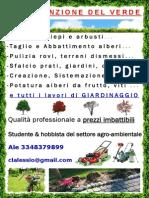 Manutenzione Verde Volantino