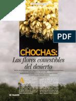 Chochas las flores comestibles del desierto