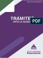 TRAMITES ANTE LA SUNAT.pdf