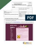 Informe Dis Web w3c (1)