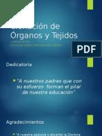 Jornadas Medicas Estudiantiles Clonación de Órganos y Tejidos