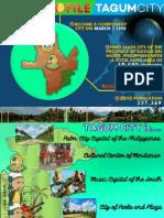TagumCity_Waste-to-Energy-ppt_MATI CITY2015.pdf