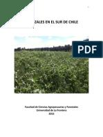 2013 Pastizales en El Sur de Chile