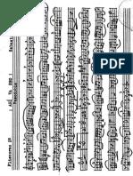 Fliscorno 2º.PDF