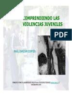 Comprendiendo Las Violencias Juveniles