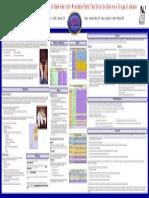 FIDOAAFS2008_21.pdf
