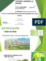 Resumen Yvan Calero.pdf