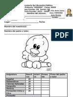 Diagnóstico 5o