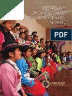 Identidad y Organización de la Juventud Indígena en el Perú