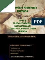 05.2 - Tejido Conectivo Especializado Adiposo y Oseo - Histologia