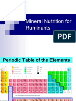 Mineral Nutrition Ruminant
