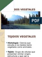 Cap 12.- TejidosTej Vegetales[1]