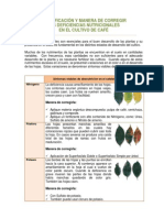 Deficiencia Nutricionales en Cafe