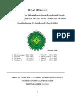 seminar katarak.revisi.docx