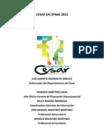Publicacion Cesar en Cifras Año 2012