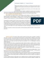 La globalización, consecuencias humanas. resumen Cap 4 y 5
