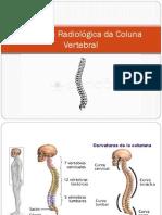 Anatomia Radiológica Da Coluna Vertebral