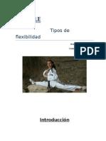 tiposdeflexibilidad-130924145902-phpapp01